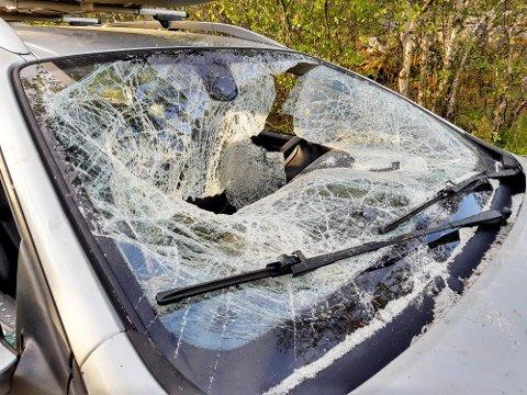 Smadret: Frontruten ble knust ved hjelp av tømmerstokken.