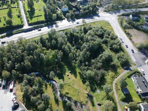 OMRÅDET: Om Norgesgruppen får det som den ønsker, vil tomta inntil Hamsunds vei (t.h.) bli ryddet for skog for å gi plass til ny butikk. Parken i Elvedalen skal ikke bli berørt. Øverst i bildet går E10.
