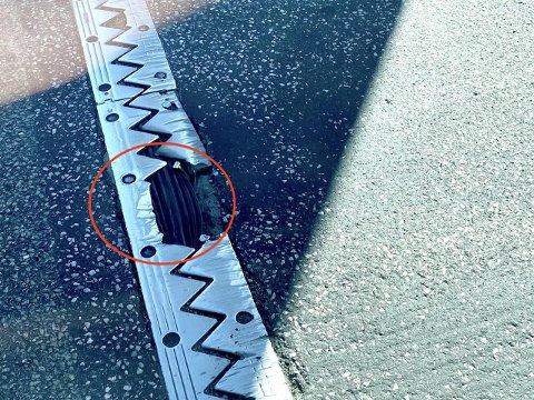 SKADE: Ifølge Statens Vegvesen er asfalten inn mot fugen og to av tengene slitt av. Foto: Privat