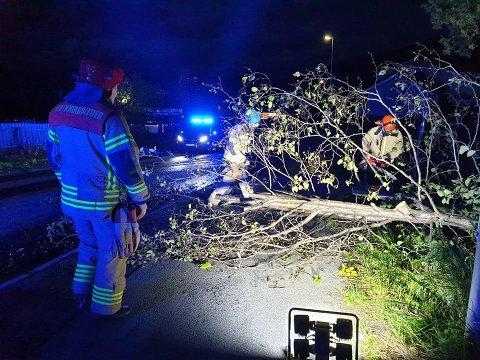 ORDNET OPP: Brannvesenet fjernet treet som delvis sperret veien i Skistua.