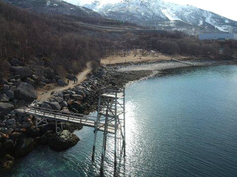 FORSØMT PERLE: Ornesvika er Narviks badestrand nummer én, men har stort behov for en oppgradering, mener Narvik SV som vil bruke koronapenger til å gjøre området mer attraktivt.