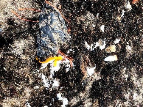 PLAST IV: Søppelsekken har ligget der en stund.