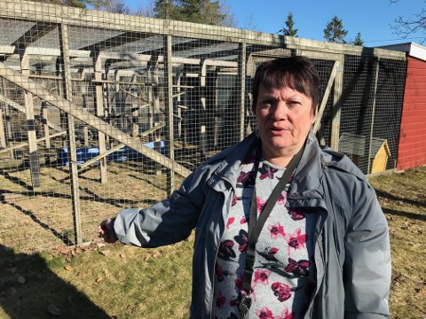 Bekymret: Else Angeltun i Dyrebeskyttelsen i Vestfold.
