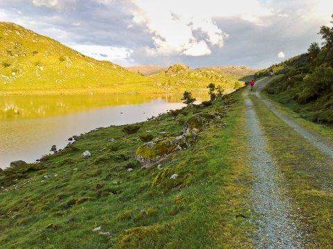 Fra Søya gardsutsalg på Søyland går turen via Strydesvatnet og videre opp til toppen.