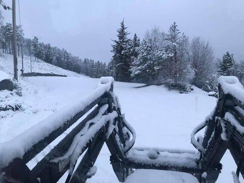 Et tynt lag med snø i Brekko onsdag formiddag.