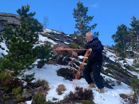 Flere av trærne på toppen av Skurve var dekket i denne plasten før Pitter Olufsen tok ned det han fikk til. Han lurer på hvem som er ansvarlig for søppelet som han tror kommer fra en bedrift i området.