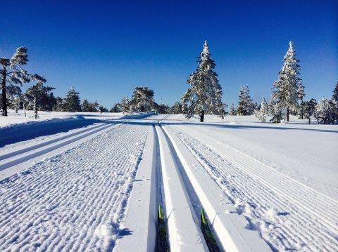 ANSVAR: I de nye fjellvettreglene blir det lagt vekt på at turgåeren selv skal sikre at turen foregår på en trygg måte.