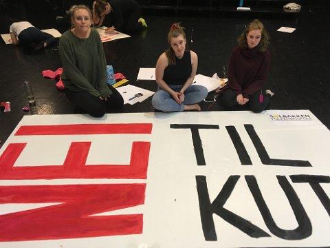 Elever ved Solbakken folkehøgskole er godt forberedt til dagens demonstrasjon foran Stortinget.