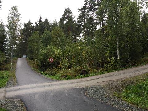 Kvinnen i 40-årene ble funnet i dette skogholtet ved Tråstad.