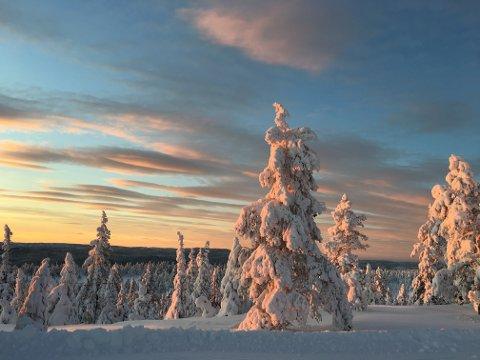 VAKKERT: Det er mulighet for en ny, vakker solnedgang i dag.