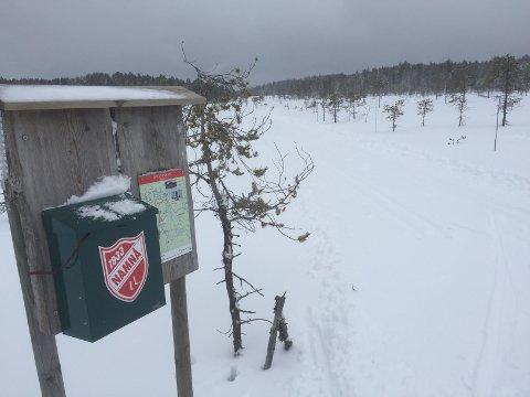 FØRST UT: Namnå IL er først ute med å melde om skispor på natursnø denne sesongen. Du kan gjøre en tur på cirka ni kilometer ved Bjørsjøtorpet.