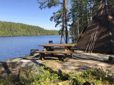 FISKESOMMER: Grue JFF arrangerer Fiskesommer for ungene ved Langtjernet 16. juni. Arrangementet er gratis for ungene.