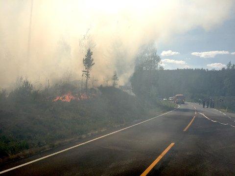BEKYMRET: Brannsjefen i Nord-Odal konstaterer at beredskapen er for dårlig. Bildet er fra skogbrannen ved Frysjøen i Grue i fjor sommer.