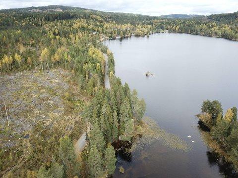 NÆRT VANNET: Oppe til høyre i bildet ser vi badeplassen på Bæreia sett fra Smalholmen. Området vest for veien er tiltenkt de mulige hyttene. Nå avslører ordfører Sjur Strand at det er også snakkes om å bygge nye hytter på østsiden av sjøen.