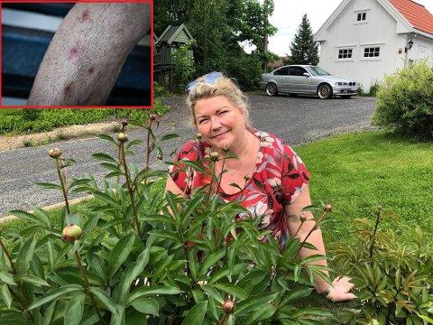 UBUDEN GJEST: Kersti Grindalen fikk besøk av en uhyggelig bevinget hagegjest.