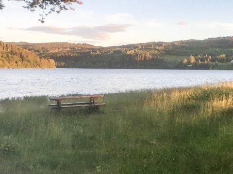 HØYT GRESS: En Kongsvinger-mann tok dette bildet ved Sigernessjøen søndag, og reagerte på at plassen var lite innbydende. Tirsdag var kommunen på stedet.