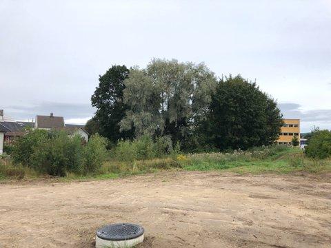 SENTRUMSKVARTAL: Her på Skarnes vil Einar Olav Skogholt og Karl Ragnar Rimfeldt bygge et helt nytt sentrumskvartal med leiligheter og næringsareal.  I bakgrunnen til høyre rådhuset.
