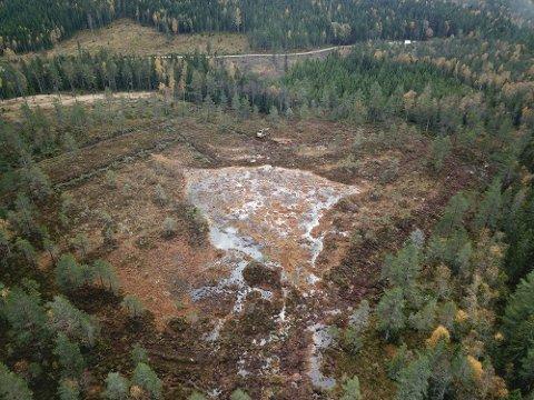 BAKKUSMYRA: Høyresiden av myra er restaurert, på venstresiden kan man se grøftene og trærne som er tatt ned.