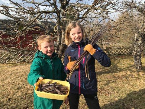 PRODUKSJONEN: av trykkepinner bare øker. og nå utfordrer Mari og Erik Briskerud andre barn til å produsere trepinner som miljøvennlige smitteverntiltak i butikkene.