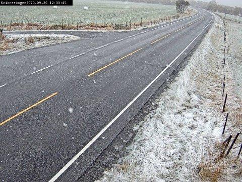 SNØ: Det snør på Kvikneskogen lørdag. Enn så lenge legger ikke snøen seg på vegen, men det skal ikke så mye til før den gjør nettopp det, ifølge Vegtrafikksentralen.