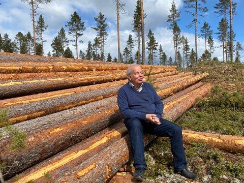 – Disse furustolpene er godt betalt, sier Per Roar Bredvold, som skryter av kommuneskogens standard og kvalitet.