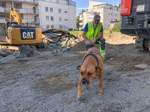 OPPMERKSOMHET: Mange har lagt merke til hunden Lorry og Leif Ihlang i Storgata.