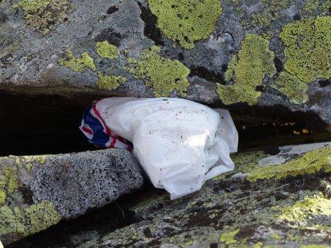 Mye av søppelet lå gjemt mellom sprekker, og var ikke noe som hadde flydd avgårde tilfeldig, forteller Marika Mellegaard Bové til GD.