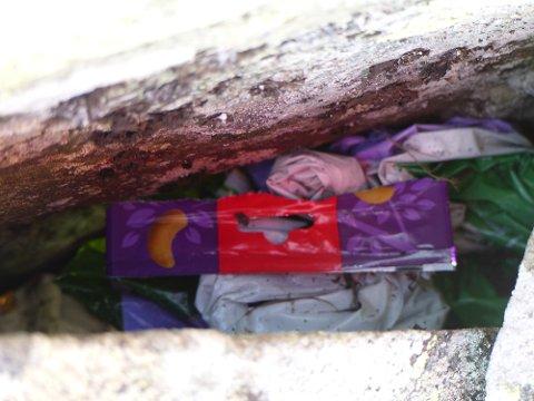 Plastsøppel funnet på Neveltoppen i helgen. Slikt avfall kan bli liggende i naturen i flere hundre år før det forsvinner.
