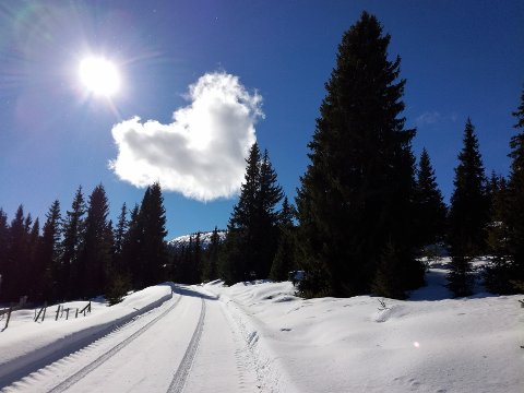 4. Himmel-hjerte over Østkjølen, Kvarvet. Foto: Per Jarle Kvebu