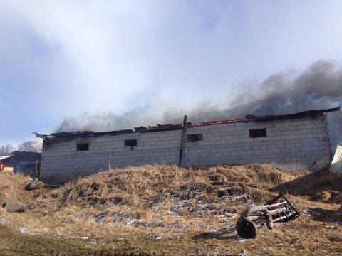 Ingen andre bygninger sto i fare for å brenne.