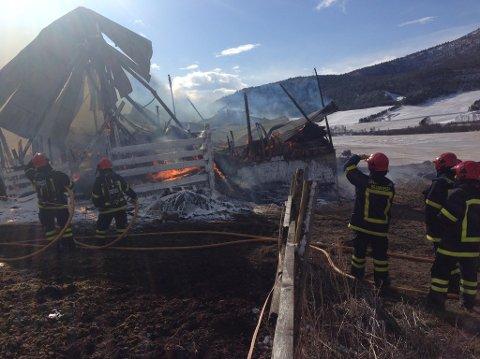 Driftsbygningen lot seg ikke redde. Den brant ned til grunnen, med over 40 kyr inne.