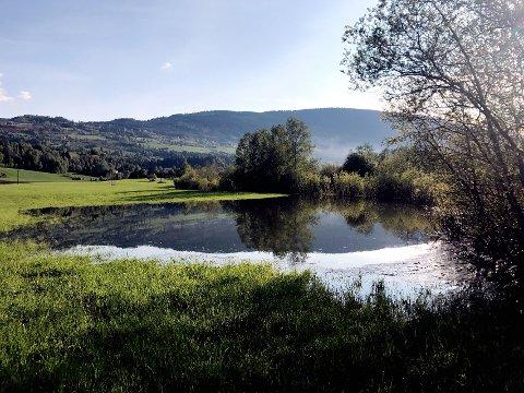 JORDET: Flere jorder i distriktet får merke en flomstor elv nå.
