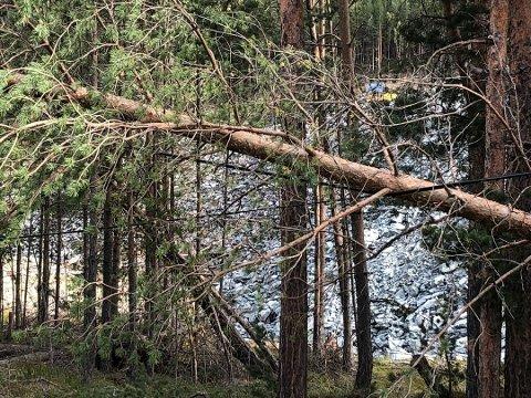 Tre som falt over linja i Ottadalen natt til 20. september i år førte til store problemer for mobil- og datasambandet.