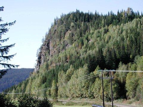 Vardkampen troner midt nede i dalen, litt sør for Tretten.