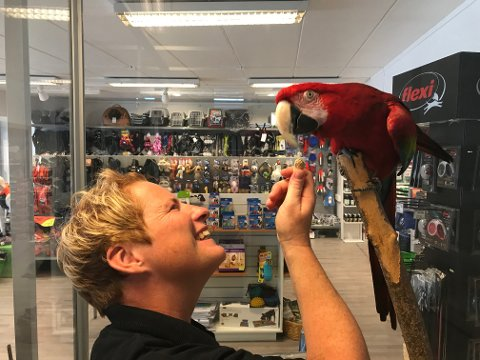 Eli Scheie og ara-papegøyen Buddy har flyttet inn i nye lokaler i Storgata 148, litt nord for de opprinnelige lokalene til dyrebutikken som brant i 2014.