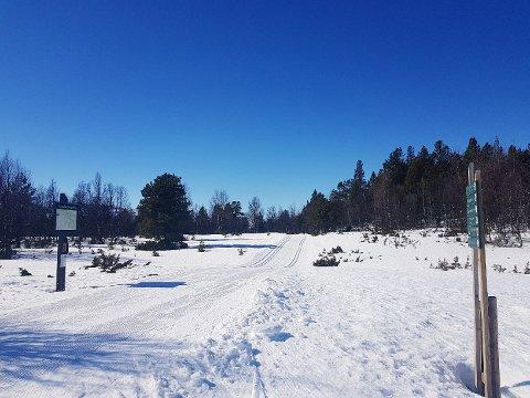 NOK SNØ: Ved Randsverksletta er det godt med snø og fine skiforhold på den populære runden rundt Lemonsjøen.