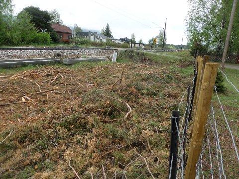 Store mengder kvist etter skogrydding ligger langs jernbanesporet på Vinstra.