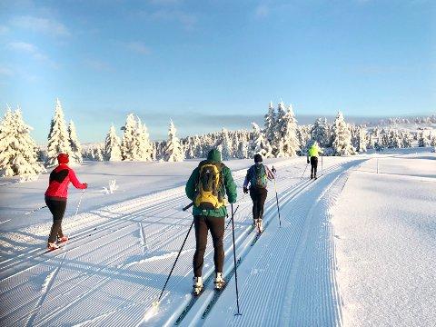 ENDELIG OPPE: Skituren innover fjellet fra Nordseter starter med stigning før en når området ved Snauskallen. Her har flere ytret ønske om en ny parkeringsplass, noe Statskog er åpen for å bidra til.