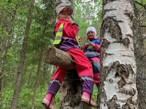KLATREJENTER: Ariel (6) og Sval (6) liker å klatre, noe som er en fordel når man liker å bruke dagen i barnehagen til å lage reir til fuglene.