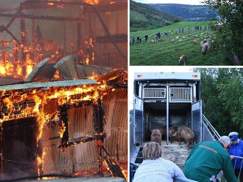 STO PÅ: Det var ingenting å si på innsatsviljen til de frivillige som dukket opp da to grisefjøs på Tretten gikk opp i flammer.