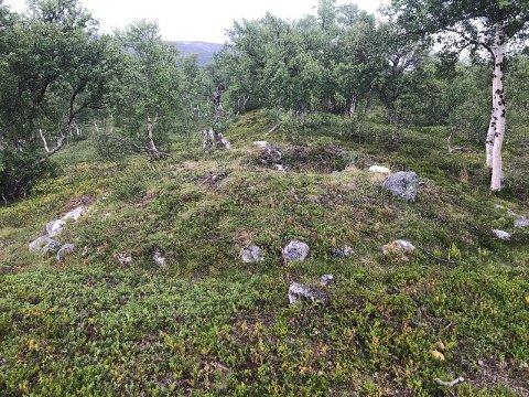 Denne gravhaugen på Lesja, 900 meter over havet, dukket opp på et LIDAR-bilde