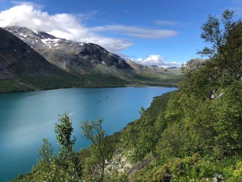 Lom Fjellstyre og Vågå Fjellstyre har i mange år hatt ei samarbeidsavtale om storviltjakta ved Gjende.