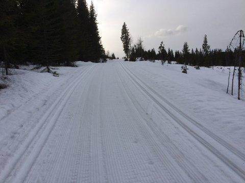 Fortsatt flotte skiløyper på Mylla 24. april.