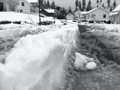 Fra vår til vinter: Det var store mengder nysnø på Hadelands-vegene forrige fredag morgen. Her fra Haneknemoen på Harestua.