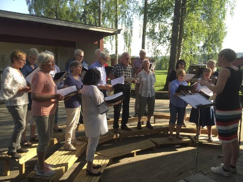 ARRANGØR: Jaren sanglag er initiavtager og arrangør av de årlige parkkveldene på Marienlyst.