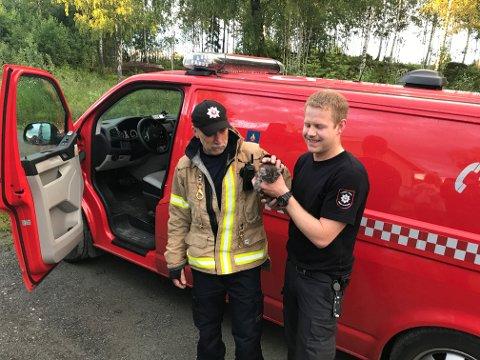 Alf Olav Ringheim og Lars Lindal i Lunner - Gran brann og redning var svært fornøyde etter at de hadde reddet kattungen ut fra bilen.