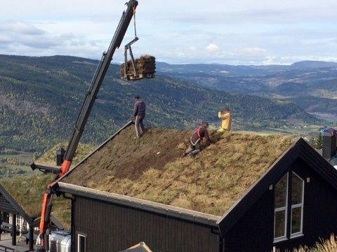 USIKRET: Arbeidstilsynet avdekker hvert år mange tilfeller av usikret arbeid ved hytteutbygging. Her er et eksempel fra hytteutbygging fra Hafjell denne uken.