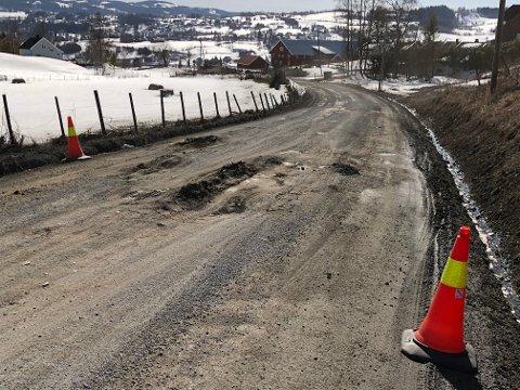 DÅRLIG: Mye trafikk og hull på hull i Flågenvegen.