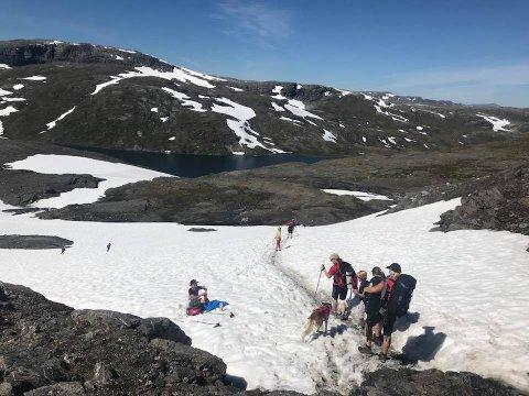 SPREK UNGDOM: Barnas turlag Hadeland ligger slett ikke på latsiden. De har akkurat kommet hjem fra en tur gjennom Aurlandsdalen på 58 kilometer. I august går turen til majestetiske Galdhøpiggen.