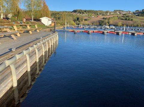 Vannstanden i Randsfjorden fotografert søndag 12. mai 2019.